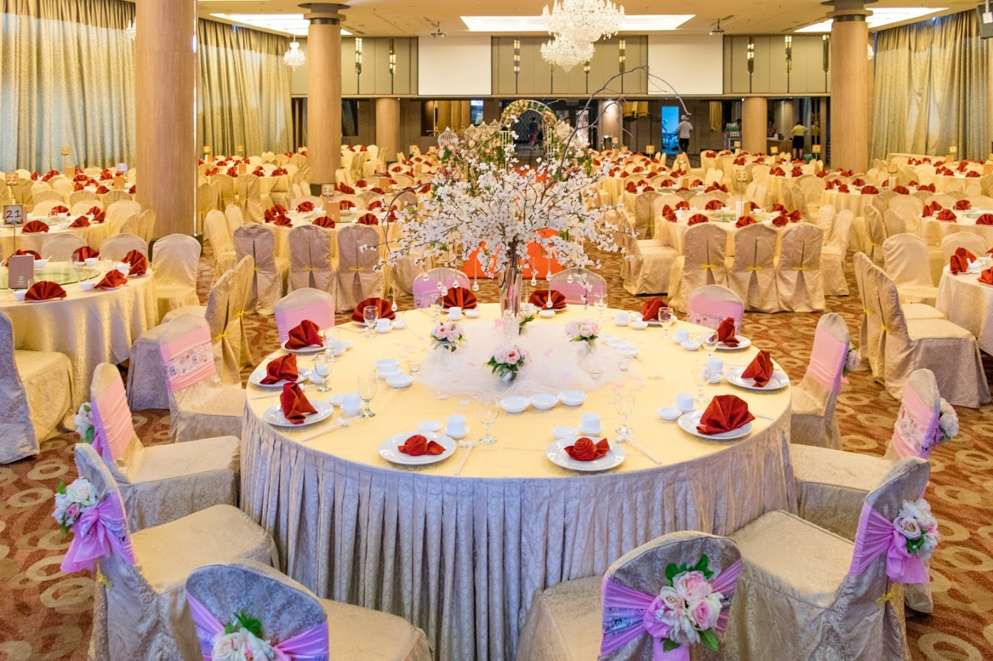 Weddings mh hotels junglespirit Image collections
